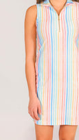 Katherine Classic Polo Dress in Rainbow Stripe