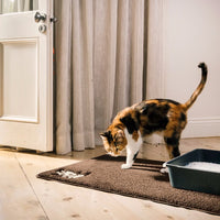 litter scatter cat mat