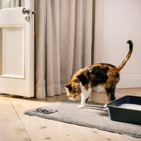 litter scatter mat