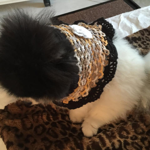 Shanna Olson Ms California 2014 pic for Myknitt Dog Clothes