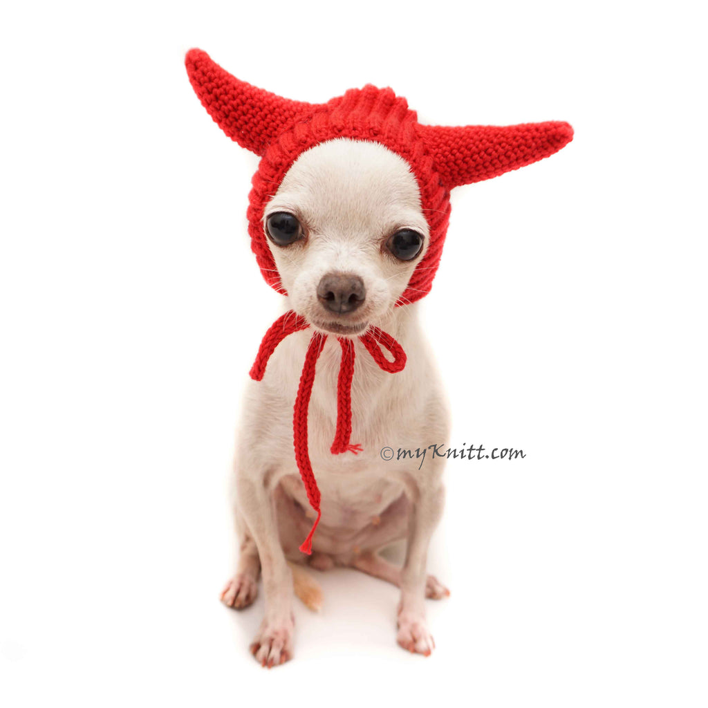 Red Devil Horns, Halloween Dog Costume, Chihuahua Hat DB10