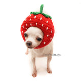 Strawberry Dog Hat Crochet, Strawberry Amigurumi Dog Toy DB12 by Myknitt