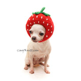 Strawberry Dog Hat Crochet by Myknitt