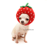 Funny Chihuahua Picture Strawberry Dog Hat Crochet by Myknitt