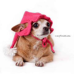 Crochet Dog Hat, Dog Pom Pom Hat, Custom Dog Hat DB2 by Myknitt