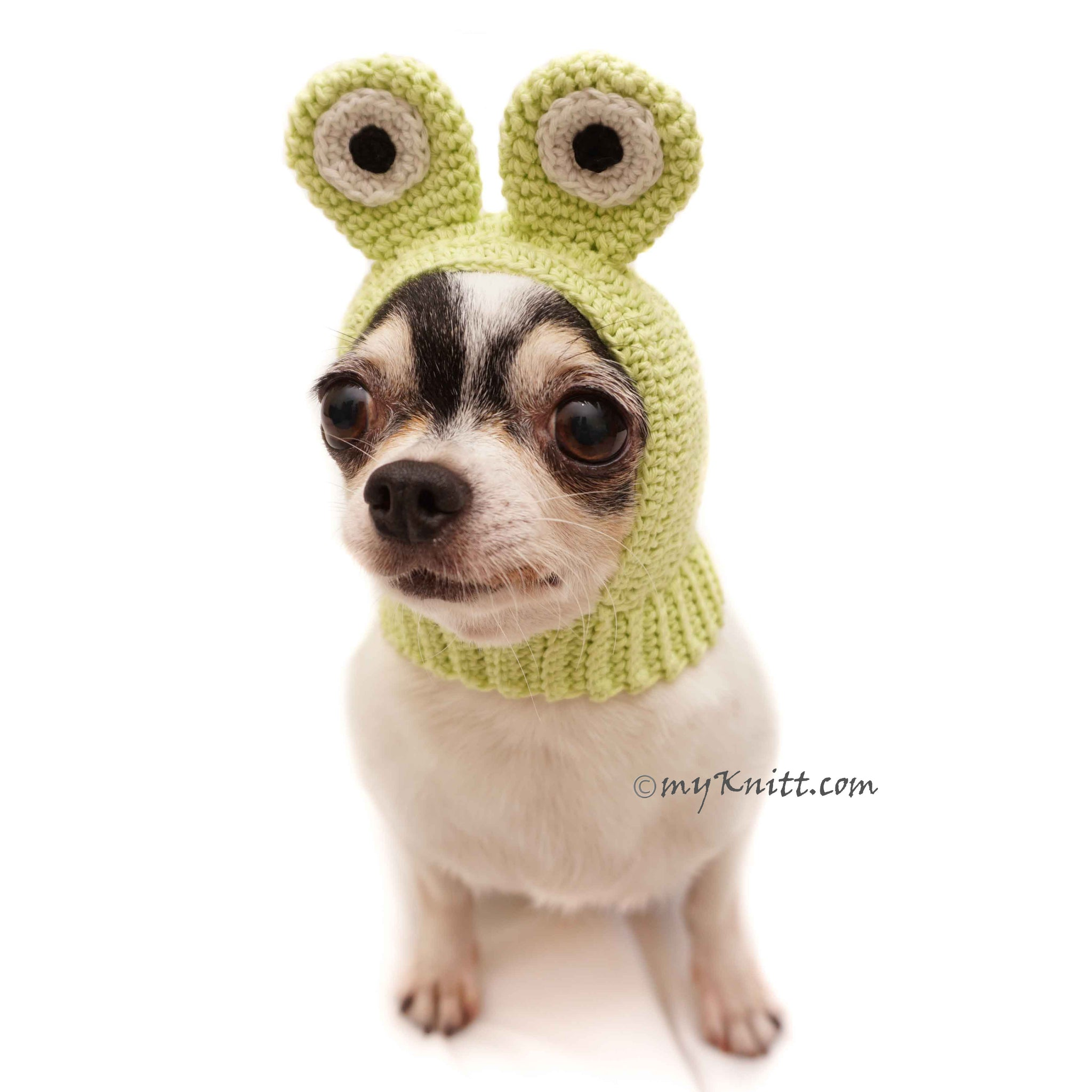 Frog Dog Hats Funny Cat Hat Crochet DB5