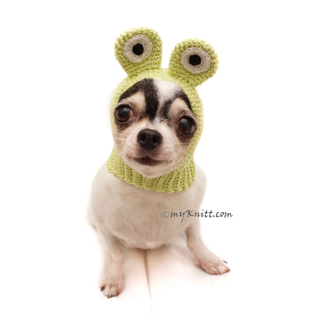 Frog Dog Hats Funny Cat Hat Crochet Dog Hat DB5
