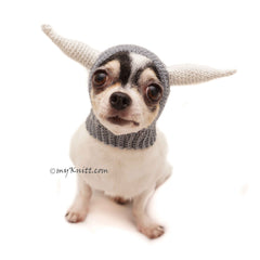 Crochet Dog Hat, Viking Dog Hats, Dog Hat with Horns DB7 by Myknitt