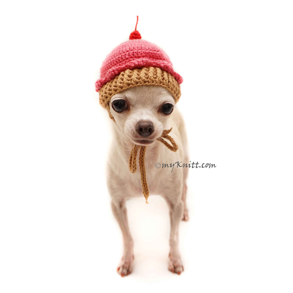 Cupcake Dog Hat Crochet, Funny Dog Costume DB9