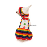 Clown Pet Halloween Costumes with Dog Party Hats by Myknitt