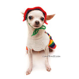 Cute Dog Clothes with Dog Hats by Myknitt