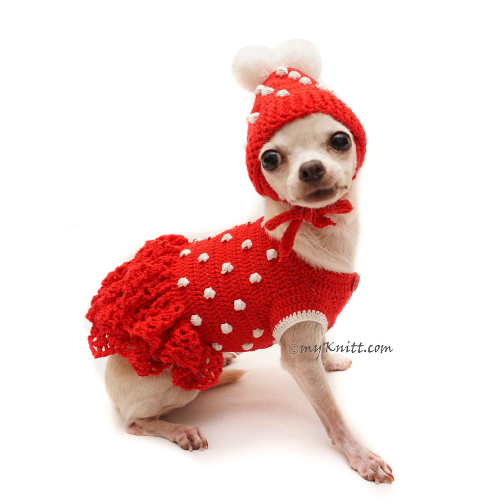 Red Dog Dress, Crochet Dog Hat, Chihuahua Winter Clothes DF115