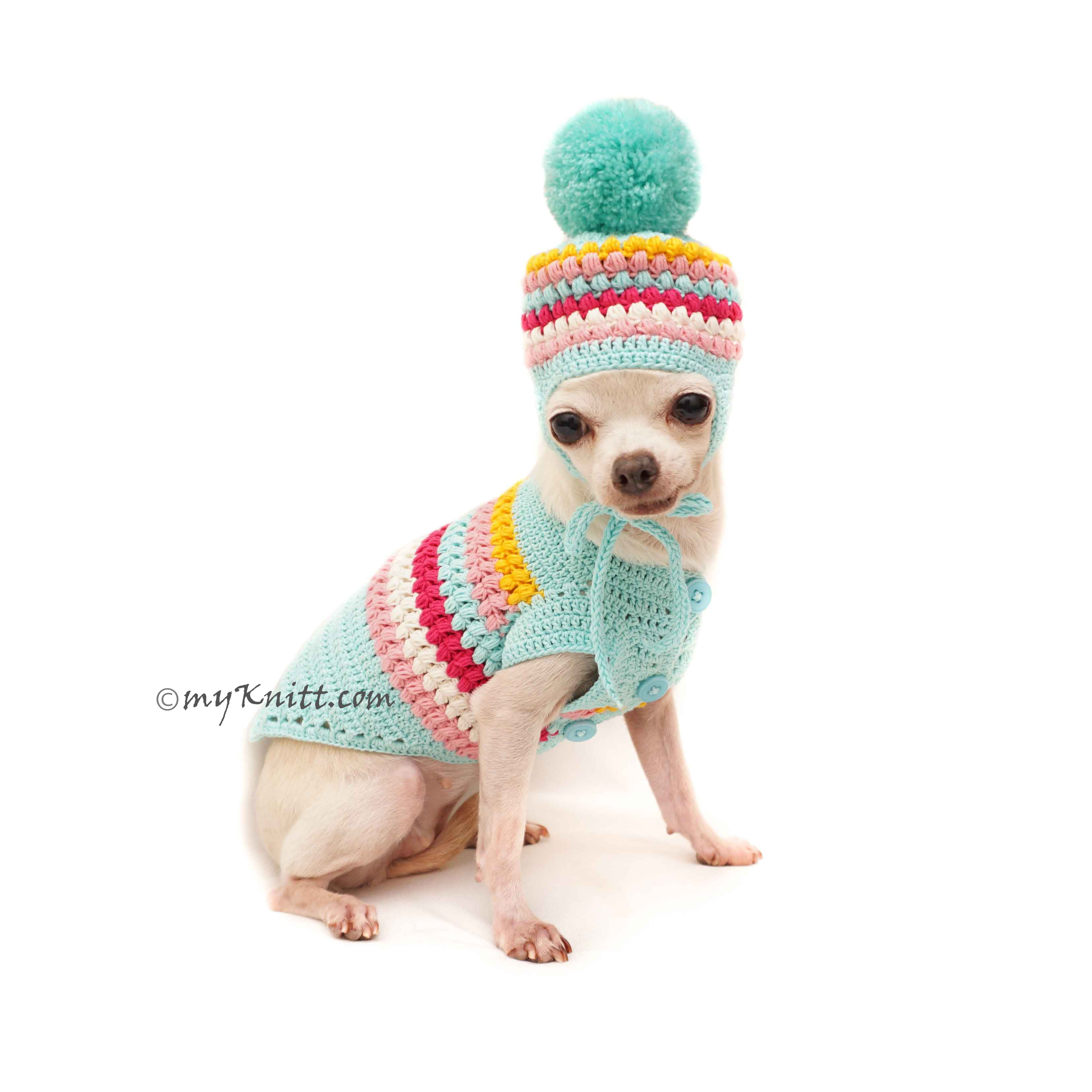 Teal Dog Sweater Knit Dog Hat , Cute Dog Clothes DF124 by Myknitt