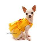 Myknitt Designer Dog Clothes, Personalized Dog Clothes