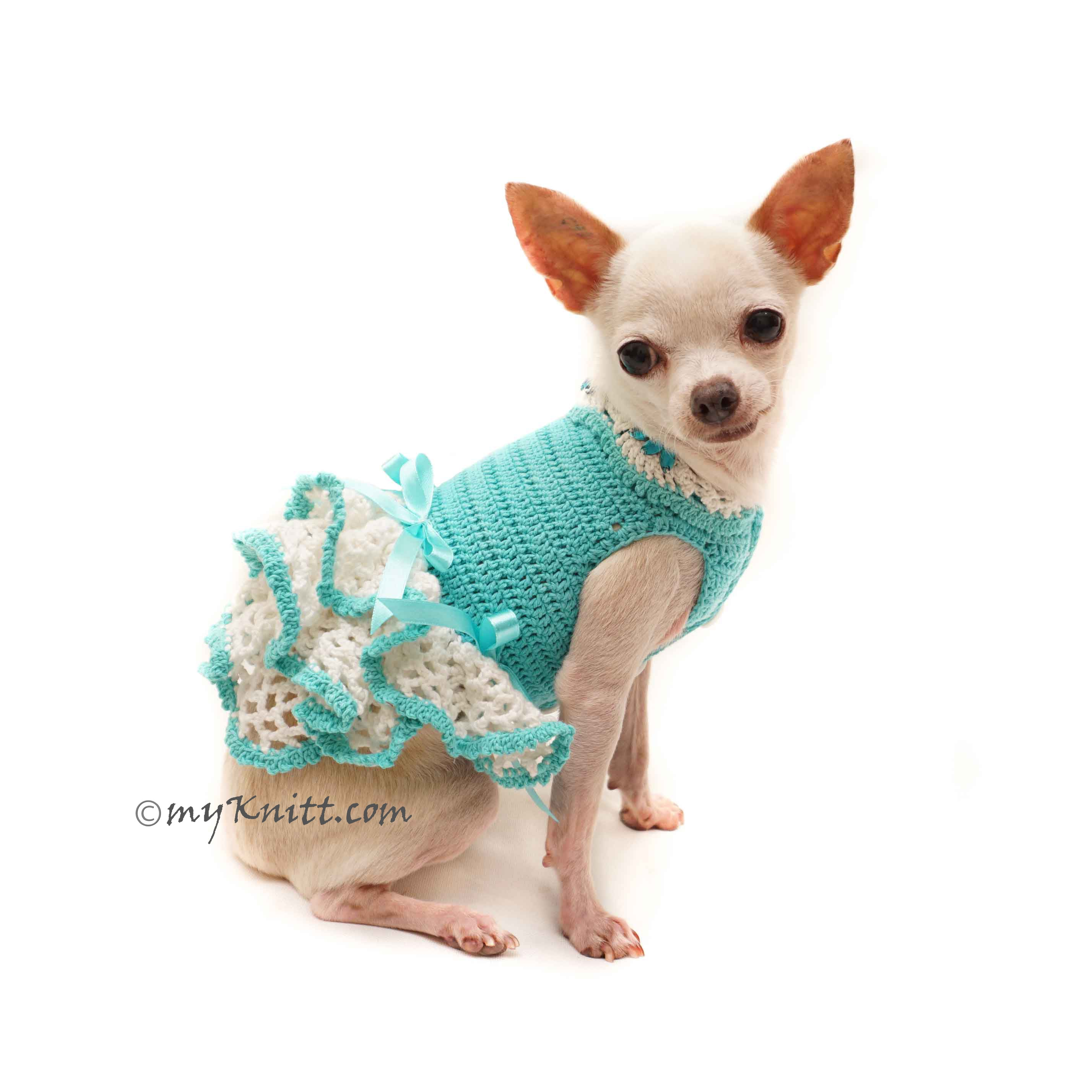 Teal Chihuahua Clothes Dress, Custom Dog Clothes, Personalized Dog Clothes Large DF126 by Myknitt