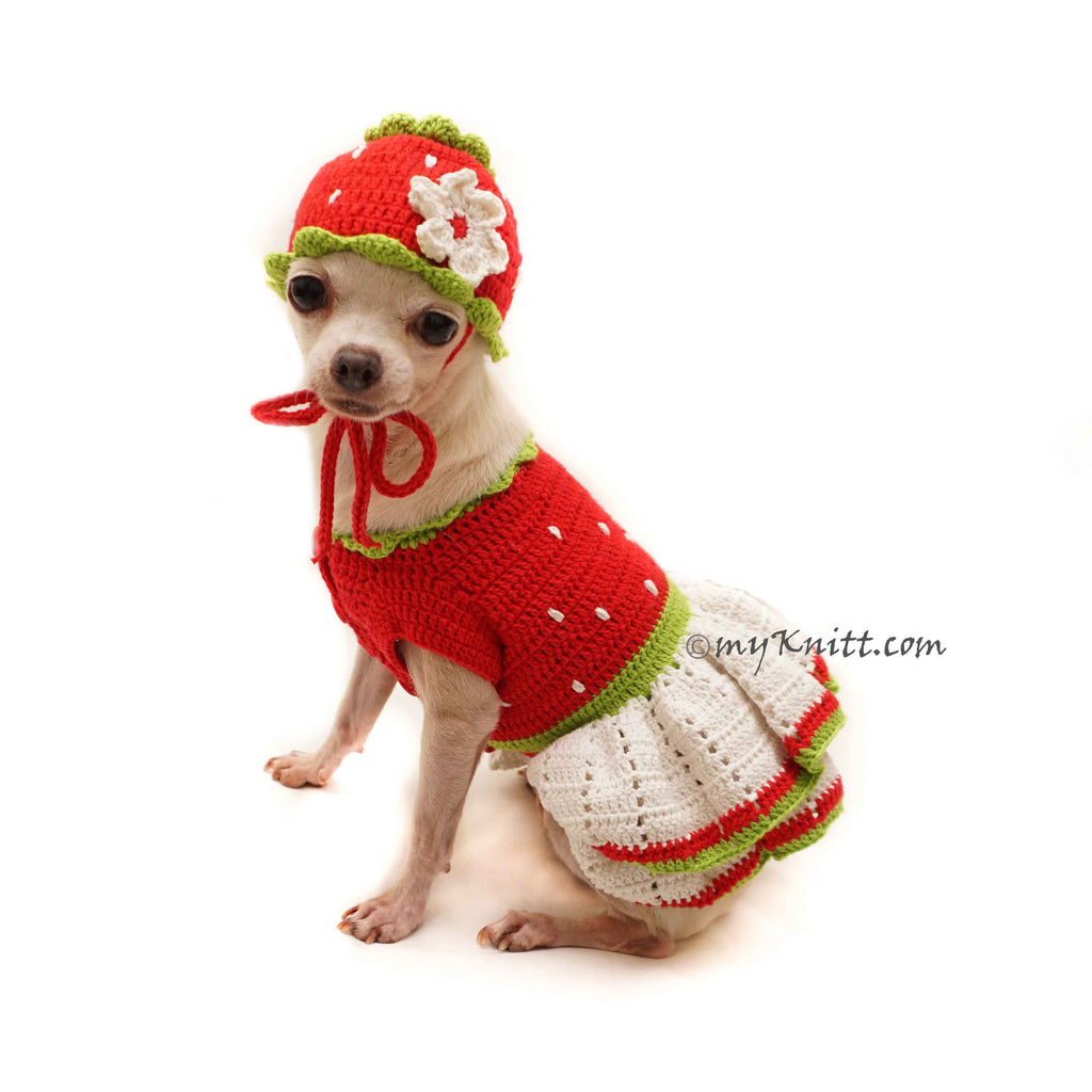 Strawberry Shortcake Dog Costume, Strawberry Dog Hat Crochet DF128