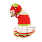 Strawberry Shortcake Dog Dress Crochet by Myknitt