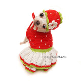 Cute Chihuahua Clothes Strawberry Costume by Myknitt