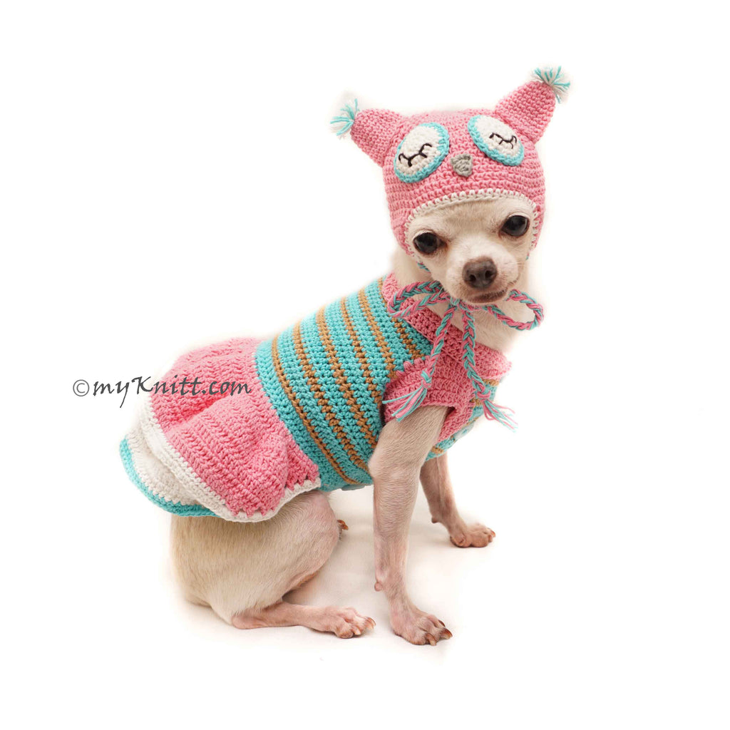 Owl Pet Costume Crochet, Owl Dog Hat Crochet, Funny Dog Costume DF129