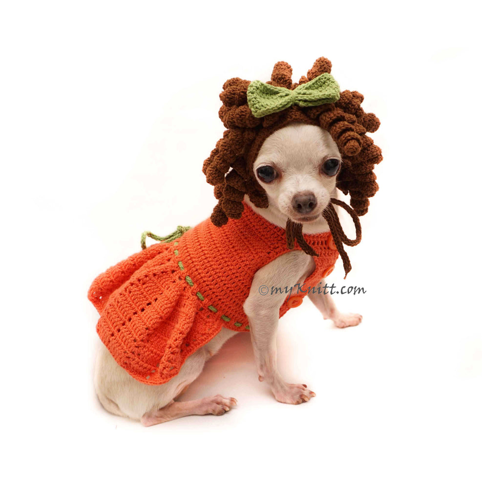 Princess Merida Dog Costume, Princess Merida Dog Dress, Merida Dog Wig Crochet DF131