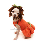 Princess Merida Dog Costume with Crochet Dog hat by Myknitt