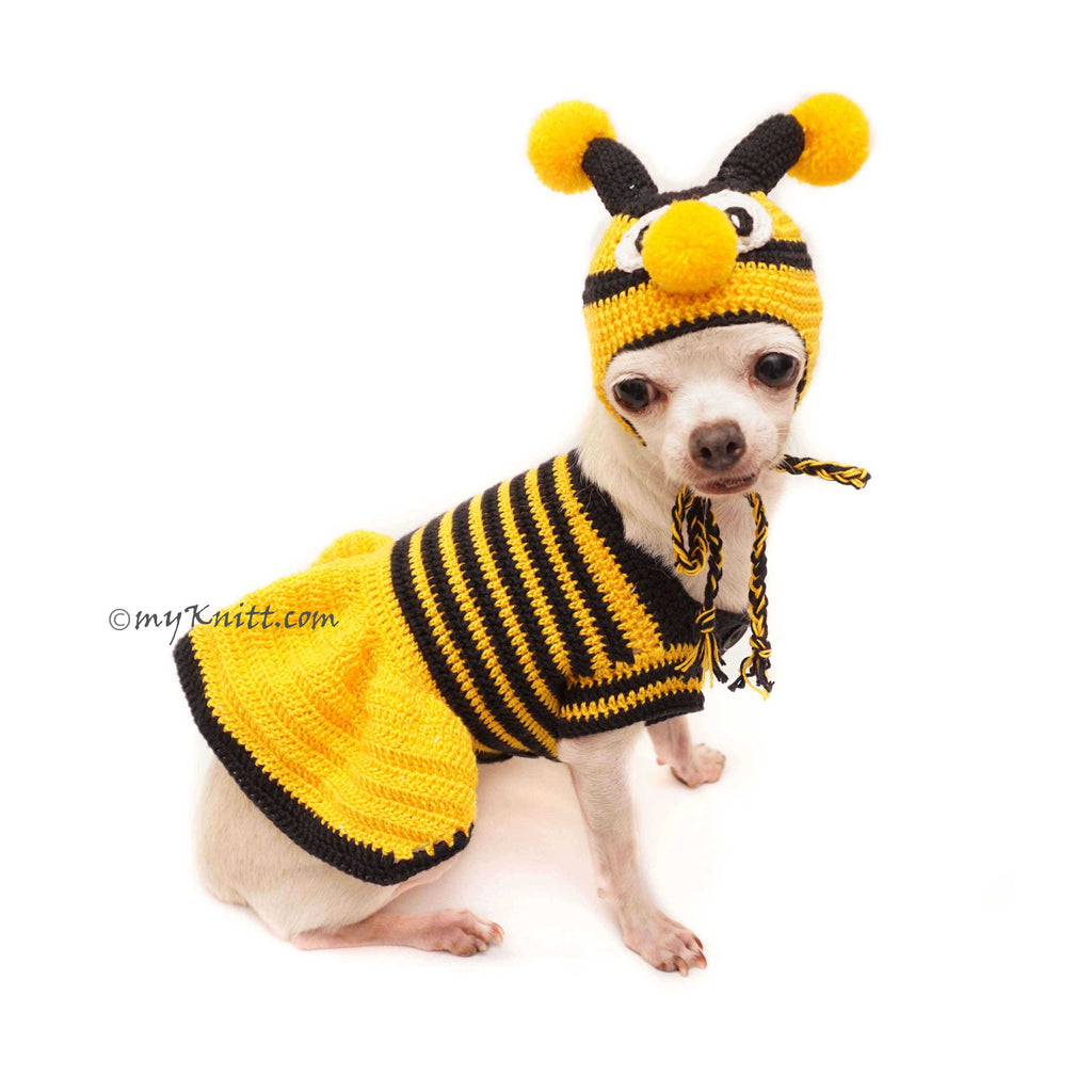 Bumble Bee Costume for Dog, Bumble Bee Dog Hat Crochet, DF133