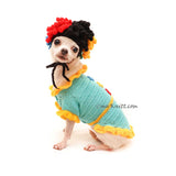 Funny Dog Costume for Birthday Party, Clown Dog Wig Crochet, Myknitt