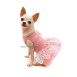 Pink Chihuahua Dress Wedding Crochet by Myknitt