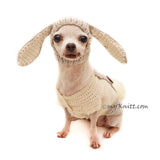 Rabbit Dog Hat Crochet, Rabbit Ears Dog Snood by Myknitt