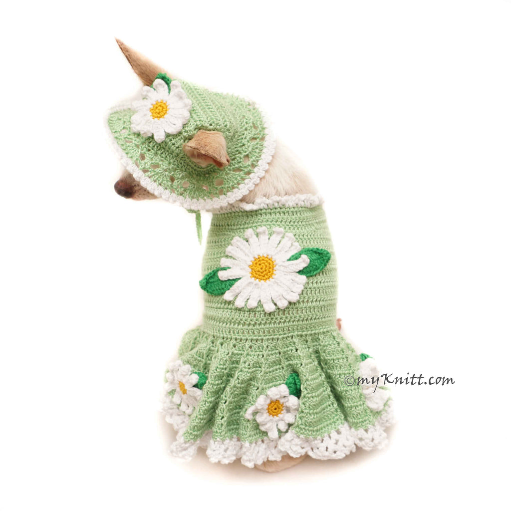 Mint Green Dog Dress Summer Flower, Mint Green Dog Sun Hat Crochet DF157 by Myknitt