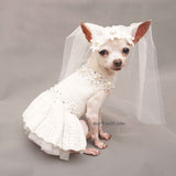 Dog Wedding Dress with Veil, Pet Wedding Ring Bearer Df166 by Myknitt
