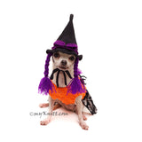 Witch Pet Hat Crochet, Witch Dog Wig, Witch Dog Hat Myknitt