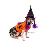 Cute Haloween Witch Pet Costume Myknitt