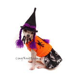 Witch Halloween Pet Costume Hat Crochet by Myknitt