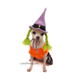 Purple Witch Dog Wig Crochet by Myknitt
