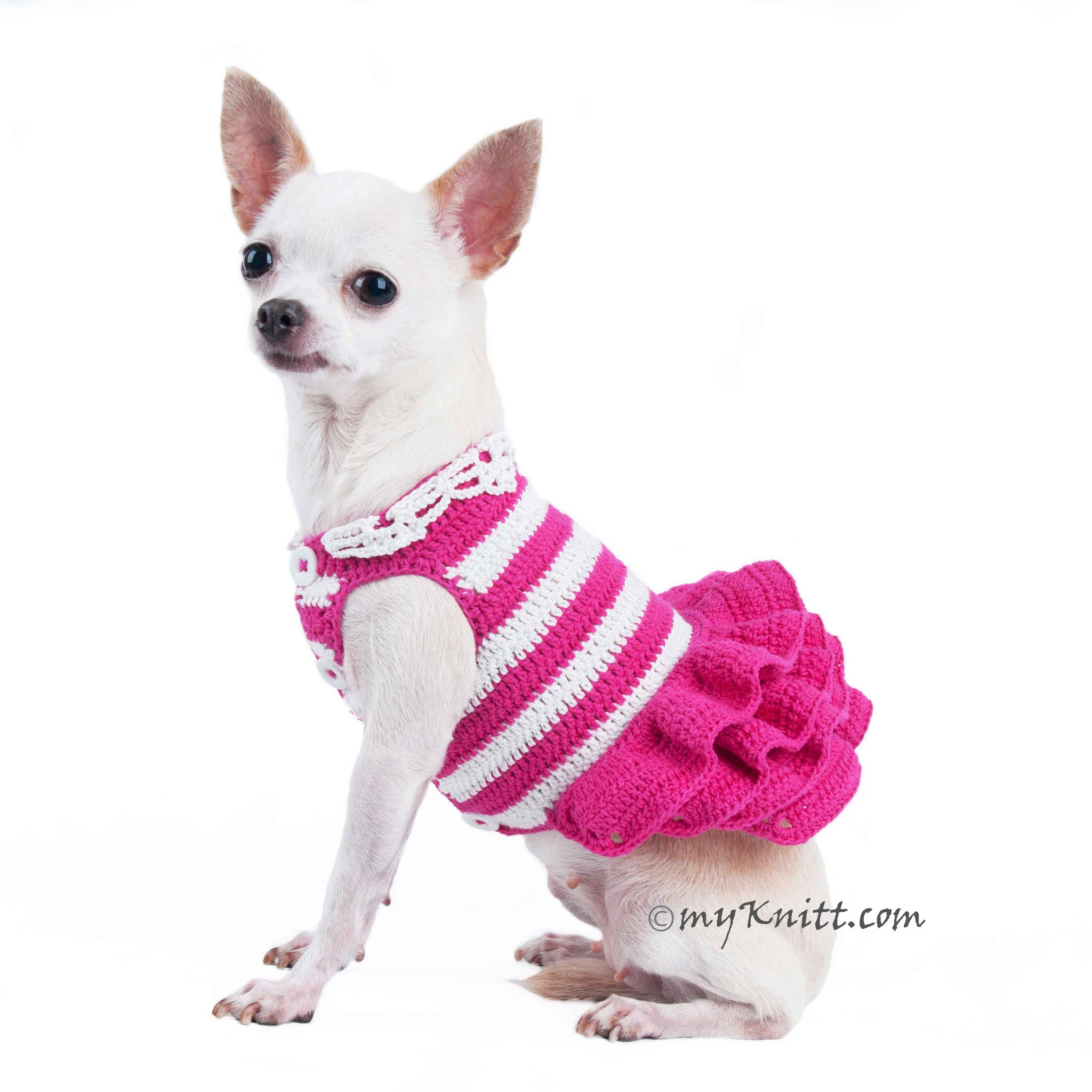 Amazing Clothes Army Adorable Dog - DF71_1  Perfect Image Reference_141938  .jpg?v\u003d1460273590