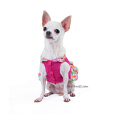 Pink Rainbow Dog Dress Cute Chihuahua Clothes with Wavy Skirts DF72