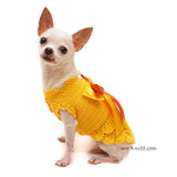 Yellow Victorian Ruffled Dog Dress Elegant Pet Costume DF92 by Myknitt (3)