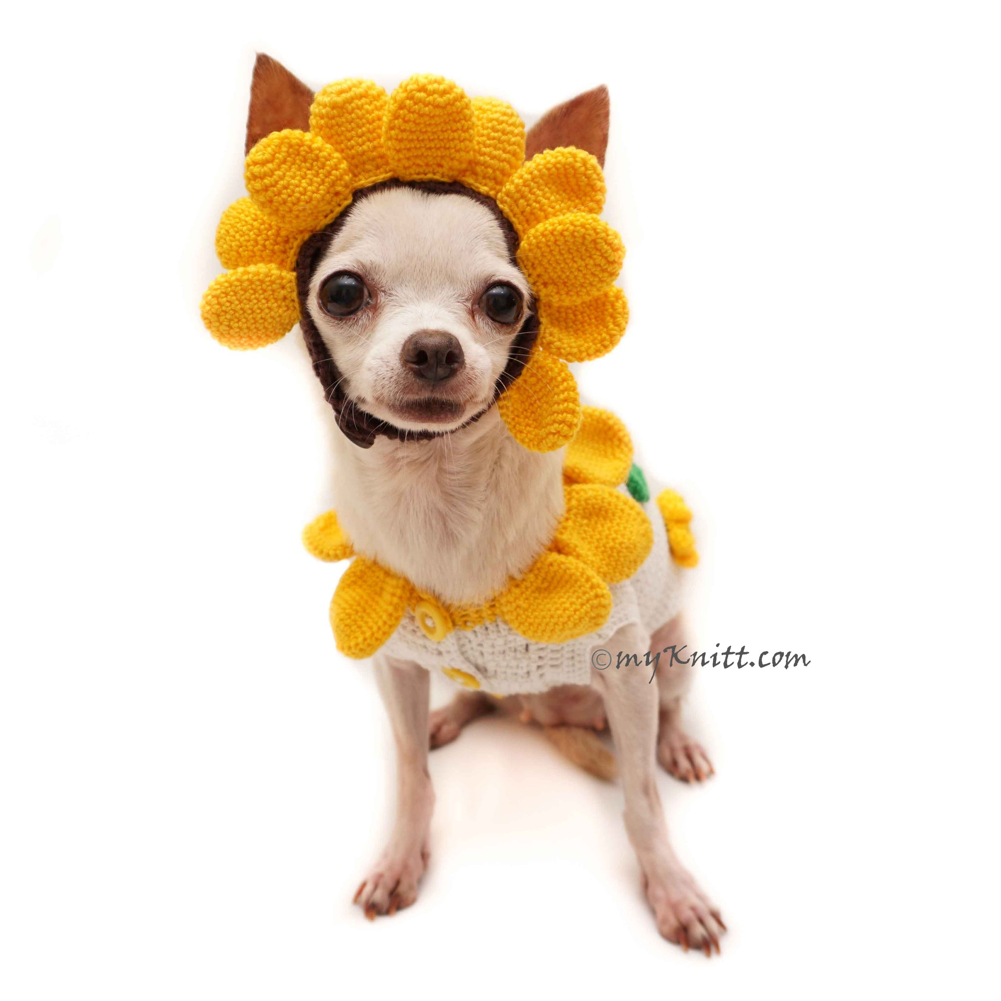 Sunflower Costume for Dogs Cute Pet Halloween Costume DF94  sc 1 st  Myknitt.com & Sunflower Costume for Dogs Cute Pet Halloween Costume DF94 | myknitt