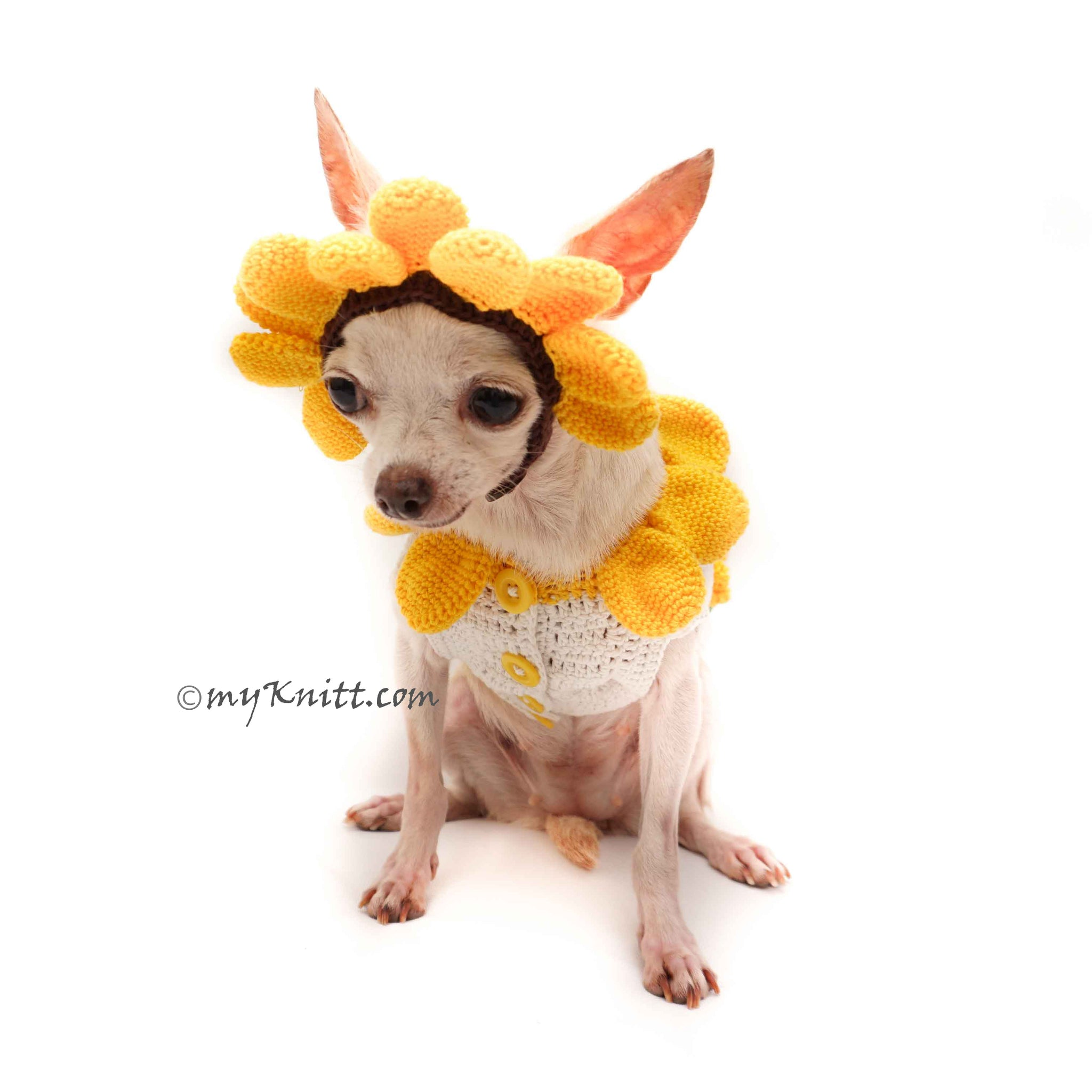 Awesome Sunflower Costume For Dogs Cute Pet Halloween Costume DF94