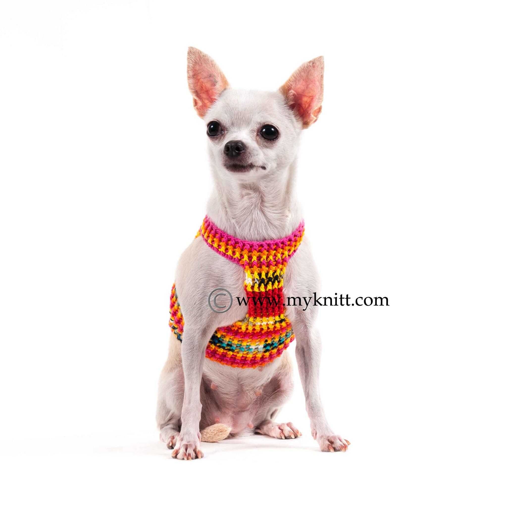 Colorful Cotton Dog Harness Comfortable Choke Free Hand Crochet DH47 ...