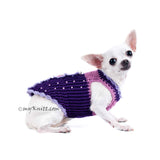 Butterfly Dog Harness Purple Summer Dog Clothes DK907 (1)
