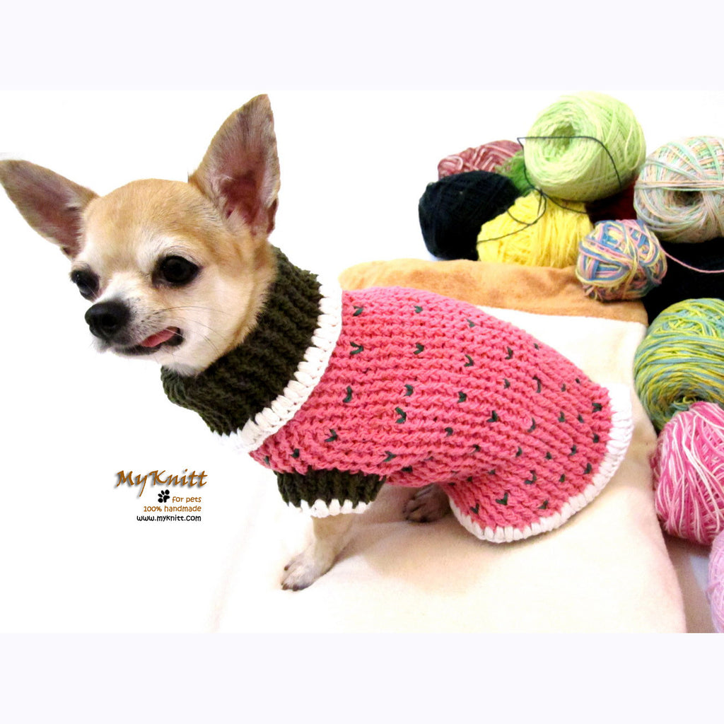 Strawberry Shortcake Crocheted Dog Sweater DK861