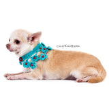 Turquoise Dog Shawl Unique Crocheted Pet Scarf with Pearls DN20 by Myknitt (2)