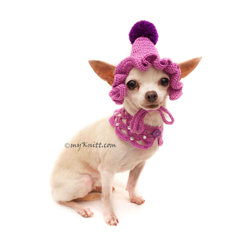 Purple Dog Bandanna Crochet, Purple Dog Hat Crochet with Dog Shawl Crochet DN25