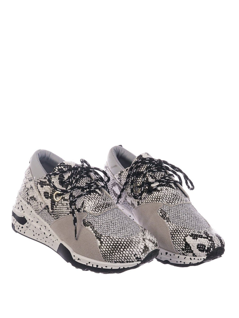 White Python / Galaxy01 Chunky Daddy Platform Sneaker - Women Jogger Color Block Retro Shoe