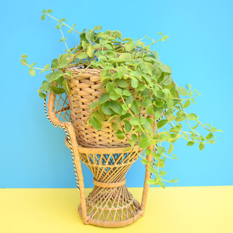 Vintage 1970s Mini Wicker Peacock Chair / Plant Stand - Natural