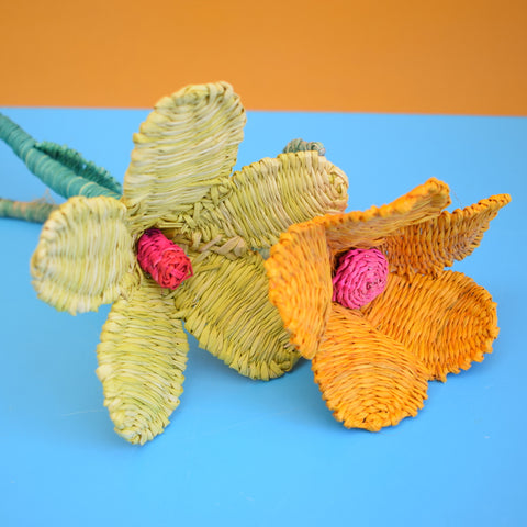 Vintage Sea Grass Flowers - Orange, Yellow / Pink
