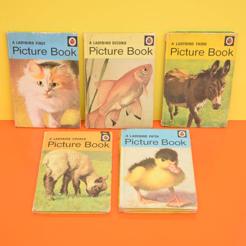 Vintage Ladybird Books - Picture Book - First, Second, third, Fourth, Fifth