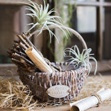 Rustic Handmade Willow Basket with Carry Handle (Set of 2) - G Home Collection